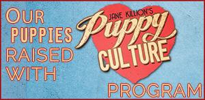 Puppy Culture – Seminar UK